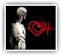 Improvements in Heart Rate Variability Following Chiropractic Care